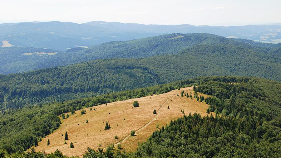 ChatkaAgi - szlaki na Mogielicę